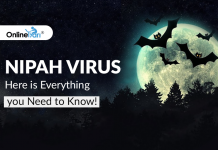Nipah Virus: Here is Everything you Need to Know!